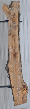 Слэб кавказского ореха, сухой, №О163