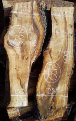Слэбы жерделы, сухие №А22-А23