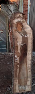 Слэб кавказского ореха, сухой, №О26