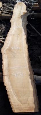 Слэб кавказского ореха, сухой, №О43