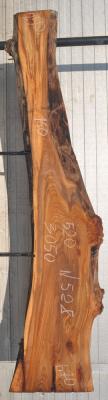 Слэб карагача, сухой № К528