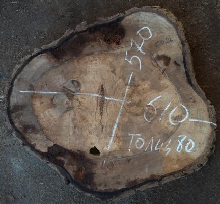 Спил кавказского ореха, сухой, №СО26